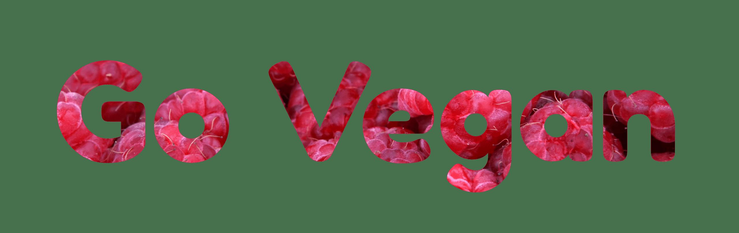 Why Vegan?